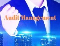Audit Mgmt-190x150